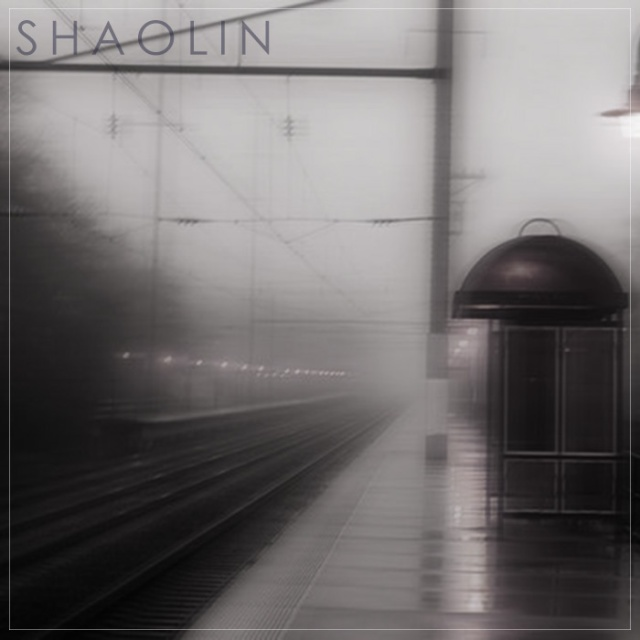 shaolin transit connections
