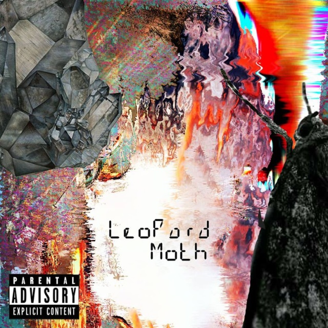 leapord moth